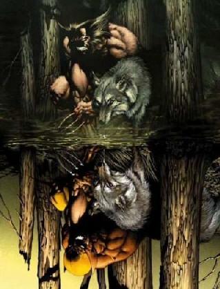 Wolverine_inthewoods.jpg