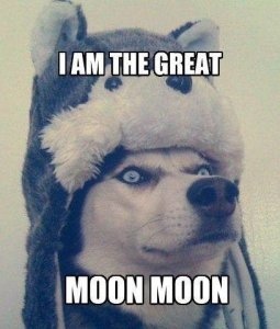 Moon_f28b78_6189259.jpg