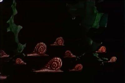 escargots2.jpg