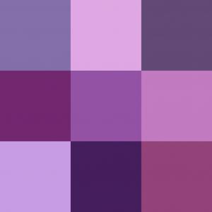 Color_icon_purple_v2.svg.png