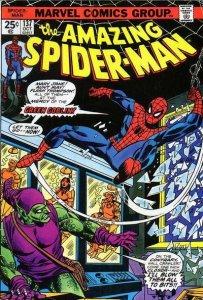 5a3d3ab516f7f_spider-man1974.thumb.jpg.88bcec6df41c7348aa9ef718b256cef6.jpg