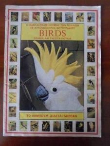 Birds .jpg