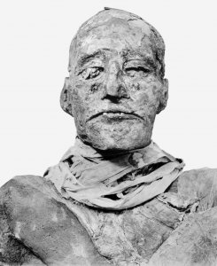 800px-Ramses_III_mummy_head.png