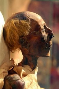 Ramesses_II_mummy_in_profile_(colored_picture).jpg