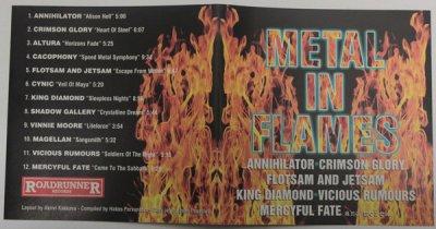 MetalInFlames_Booklet1.thumb.jpg.cc56b0444949efaf9f7542403fb478ee.jpg